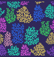 corals colorful seamless pattern vector image vector image