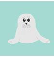 Cute seal pup baby harp Cartoon character Blue vector image