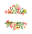 hand drawn tropical flower botanical framing vector image vector image