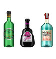 realistic alcohol drinks in a bottle vector image vector image