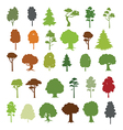 30 forest trees vector image vector image
