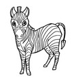 cartoon cute zebra coloring page vector image vector image