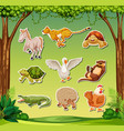 set of exotic animal sticker vector image vector image