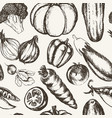 vegetables - black and white hand drawn seamless vector image