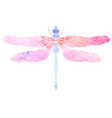 watercolor of dragonfly with boho pattern e vector image vector image