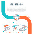 website banner and landing page mushrooms