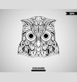 abstract owl head vector image vector image