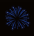 beautiful blue firework bright firework isolated vector image vector image