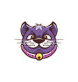 cat funny face vector image vector image