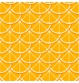 Orange slices seamless pattern vector image vector image