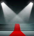 Red carpet on the stairs vector image