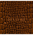 Stones texture brown vector image