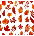 Autumn Foliage Seamless Pattern vector image vector image