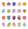 cartoon cute owls set funny and angry birds vector image