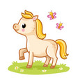 little cute foal with a golden mane standing in vector image