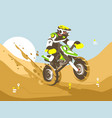 motorcyclist racing in desert vector image vector image