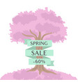 pink blossom tree with spring sale ribbon vector image