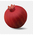 pomegranate icon realistic style vector image vector image