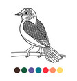 antistress coloring zentangle bird vector image vector image