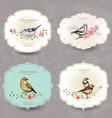 collection retro label cute bird watercolor vector image vector image