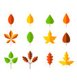 colorful autumn leaves set cartoon leaf in flat vector image vector image