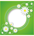 Abstract green background with flower chamomile vector image vector image