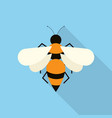bee icon set of great flat icons design concepts vector image