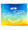 calligraphy and summer background vector image vector image