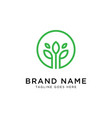 green leaf logo design inspiration vector image vector image