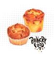hand drawn baking muffins vector image vector image