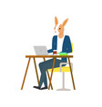 hare working on laptop sitting at table and typing vector image