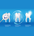 oral care and dental health concept shiny clean vector image