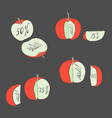set with apples vector image