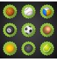 Sport Balls Football Soccer Voleyball etc Flat vector image