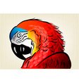 parrot background vector image