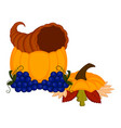 cornucopia with grapes a pumpkin and leaves vector image vector image