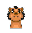 cute pig face cartoon style on white background vector image