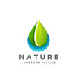 modern nature droplet leaf and water logo icon vector image