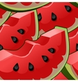 Seamless background with watermelon slices vector image vector image