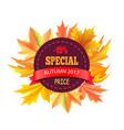 special autumn 2017 price 15 off logo stamp