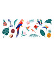 tropical poster jungle flora and fauna exotic vector image