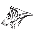 wolf muzzle vector image vector image