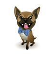 dog breed french bulldog beige french bulldog vector image