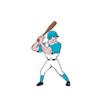 Baseball Player Batting Stance Isolated Cartoon vector image vector image