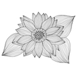 decorative sunflower vector image
