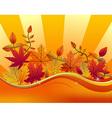 Fall season background vector image