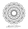 mandala decorative ornament design vector image vector image