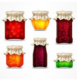 natural fruit jam preserves vector image