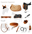 Set of equestrian equipment vector image