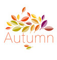 autumn leaves abstract vector image